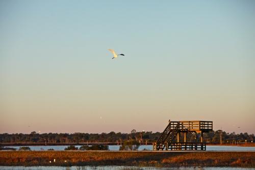 Ritch Grissom Memorial Wetlands.